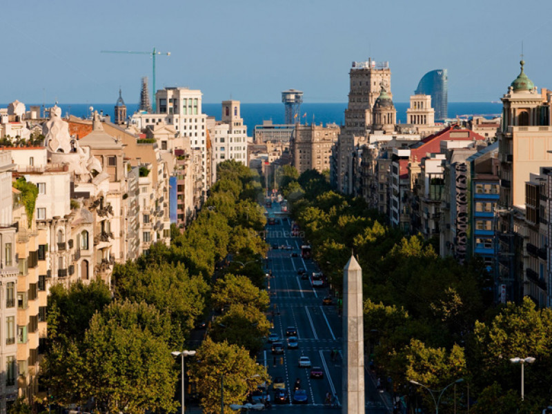 Experience and discover Barcelona if you have just arrived