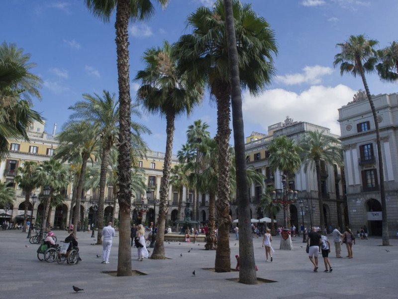 5 powerful reasons to study Erasmus in Barcelona (Part 2)
